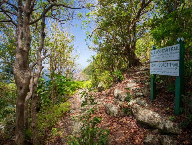 saba-path-hill